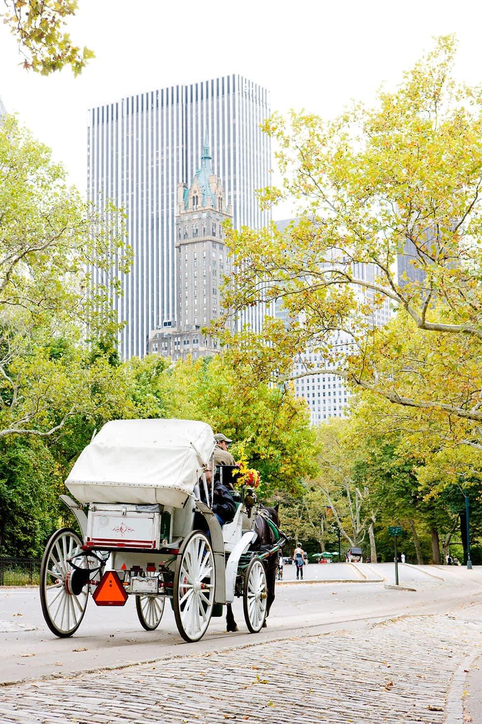 Kutschfahrt durch den Central Park in New York