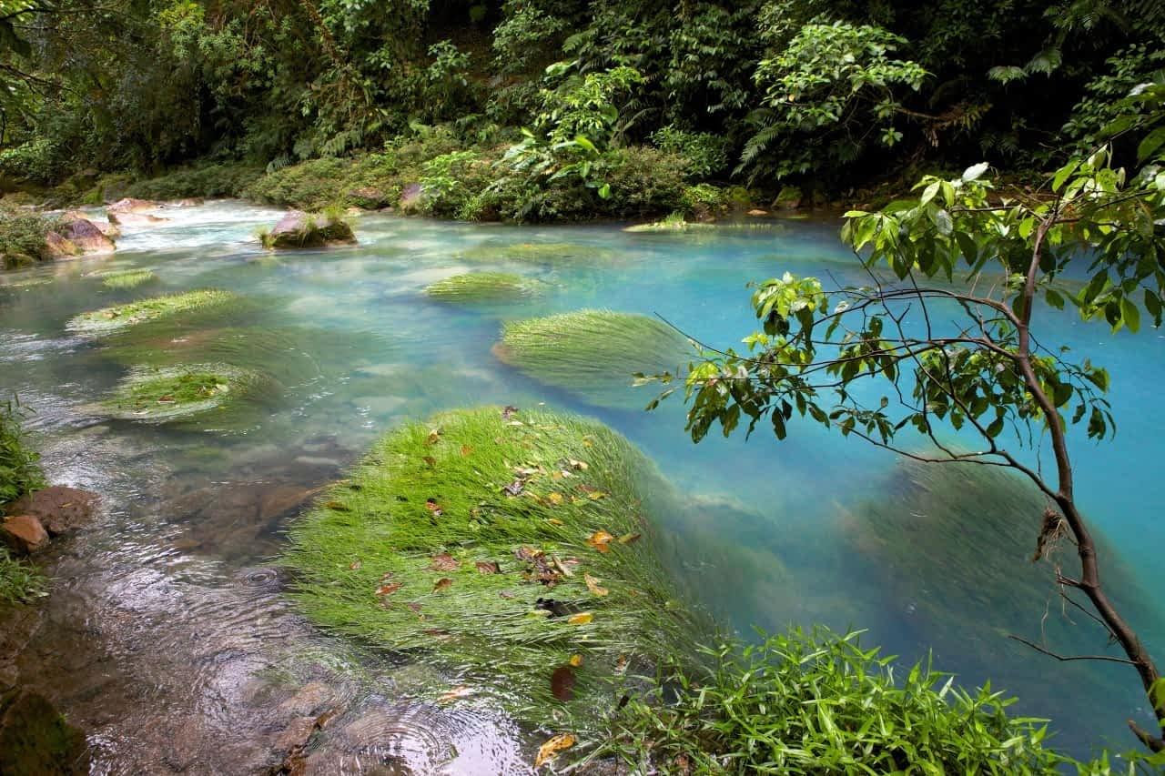 Costa Rica Rio Celeste
