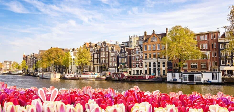 Tulpen, Grachten und schöne Architektur